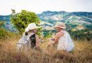 Cucina d'autore, natura e vini eccellenti per la Mangialonga Picena 2016