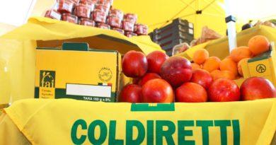 Frutta anti-caldo, da Pesaro a Fermo è Pesca Day
