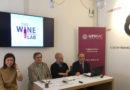 The Wine Lab, un progetto tra Università di Macerata e imprese vitivinicole per lo sviluppo territoriale