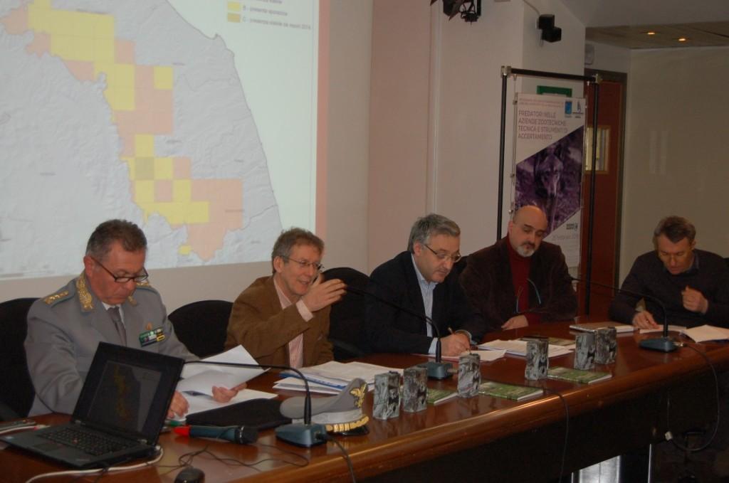 Scontro Regione-Coldiretti sulla presenza del lupo nelle Marche