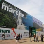 I vignaioli biologici di Terroir Marche a Vinitaly