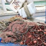 Iniziative della Coldiretti per sostenere i pescatori marchigiani