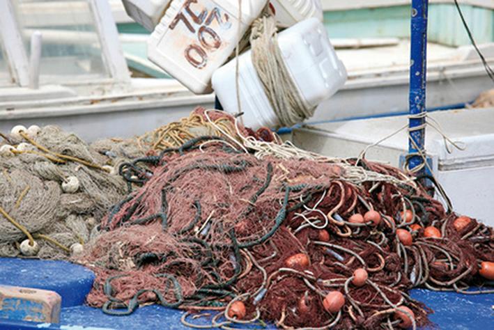 Stop al pesce fresco su tutta la costa marchigiana