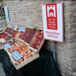 A Montefiore dell'Aso al via la sagra della frutta