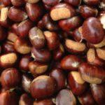 Nelle Marche crolla quest'anno il raccolto delle  castagne