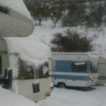 Governo e Regione in ritardo: nelle zone terremotate gli animali rischiano di morire sotto la neve