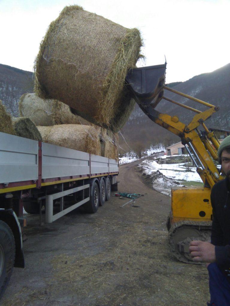 Fieno, paglia e mangime per gli allevatori terremotati