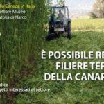 """Fabbri: """"Una filiera agro-industriale della canapa può contribuire a rilanciare l'occupazione nelle Marche"""""""