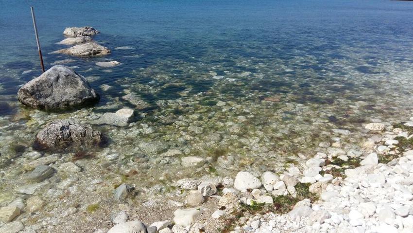 L'impegno degli operatori di Portonovo rilancia il mare delle Marche
