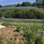 ANCONA / Per il ponte di Via Saline, a Paterno, un anno di promesse