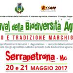 Gusto e tradizione marchigiana al centro del Festival della biodiversità agraria di Serrapetrona