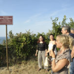 Inaugurato ad Ancona il Belvedere Bruno Cantarini, insegnante ed artista