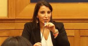 """Calendario venatorio Marche, Brignone: """"Da Pieroni dichiarazioni assurde"""""""