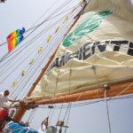 Salpa la Goletta Verde, ecco i numeri di Mare Monstrum 2018 sul mare illegale