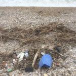 Oltre duemila rifiuti trovati sulle spiagge marchigiane, in media 333 ogni 100 metri