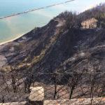 PESARO / Domato dai canadair l'incendio sul San Bartolo