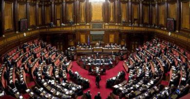 """Silvana Amati: """"Diritto di nascere e libertà di morire, l'importanza della legge sullo ius soli"""""""