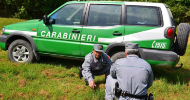 Una maggiore presenza dei Carabinieri Forestalisul territorio a garanzia della sicurezza e della legalità