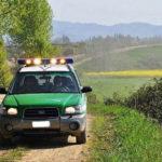 Captazioni abusive lungo il torrente Arzilla: controlli e sanzioni dei Carabinieri Forestali