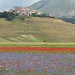 La ricostruzione di Castelluccio, ecco la posizione del Parco nazionale dei Monti Sibillini