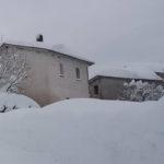 Il cane delle nevi, un breve racconto dalla periferia di Ancona