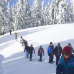 Nelle Marche sono 4 le buone pratiche ecofriendly che hanno riportato il turismo sulle montagne colpite dal sisma
