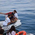 """Torna in mare la tartaruga """"Agente Lisa"""", salvata dai poliziotti della Questura di Pesaro e Urbino"""