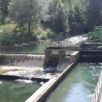"""L'allarme degli ambientalisti: """"Il fiume Potenza rischia un disastro ambientale"""""""