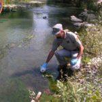 Inquinamento nel fiume Foglia, i Carabinieri Forestali accertano uno sversamento di sostanze pericolose
