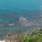 Giovedì ad Ancona il mare del Conero al centro di un incontro con il professor Roberto Danovaro