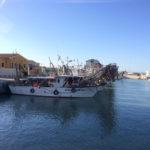 Marche spaccate dal fermo pesca e dalla stretta su sardine e acciughe