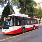 Rinnovo della flotta, domenica Conerobus festeggia con la città i nuovi mezzi entrati in servizio ad inizio anno
