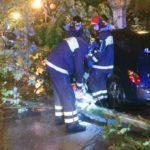 Allagamenti ed alberi e rami caduti: una giornata di interventi per i vigili del fuoco