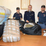 Sequestrata dalla polizia a Gabicce Monte mezza tonnellata di marijuana