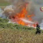 In fiamme alla periferia di Fabriano cinquemila metri quadrati di vegetazione selvatica