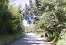 La Panoramica del San Bartolo, arriva l'ordinanza della Provincia per limitare il traffico veicolare
