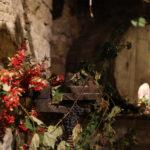 A Pollenza con Cantine e Castagnata si torna a celebrare i sapori dell'autunno