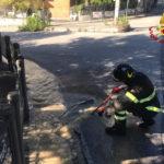 Ad Ancona si rompe una tubazione idrica, i vigili del fuoco evitano danni alle abitazioni