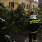 Allagamenti, alberi e rami pericolanti: mattinata di interventi per i vigili del fuoco