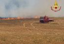 In fiamme alla periferia di Osimo 7 ettari di sterpaglie e vegetazione