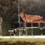 Magistrale interpretazione della sinfonia n.9 di Beethoven al Parco Miralfiore di Pesaro