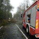 Tanti i danni provocati dal maltempo: vigili del fuoco impegnati su più fronti