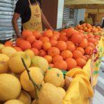 Tre marchigiani su quattro mangiano frutta tutti i giorni