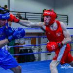 Un'altra bella manifestazione di boxe con matches spettacolari nella palestra Coni di Fermo