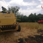 Un altro incendio in un campo di grano, coinvolta parzialmente una mietitrebbia