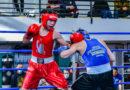 Le giovani promesse della boxe marchigiana protagoniste sabato sul ring di Fermo