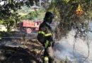 Un vasto incendio di vegetazione alla periferia di Ancona. Area sotto controllo durante la notte / Video