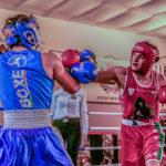 Sabato a Montecchio torna la boxe: atleti marchigiani contro abruzzesi e romagnoli