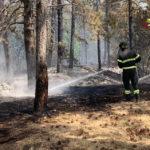 Nelle Marche brucia un altro bosco, l'ultima devastazione a Camerino