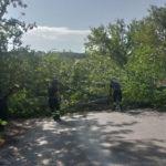 Molti interventi per il maltempo nelle province di Ancona e Macerata